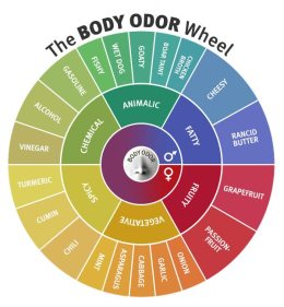 Body Odor Wheel